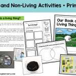 Living Things Science Foundation Unit - Animals, Plants and their Needs | What is a living thing? What do living things need? The needs of living things | What do plants need? What do animals need? | Printables, hands-on activities, worksheets, lesson ideas | Australian Curriculum Unit for Prep Foundation Kindergarten Year |